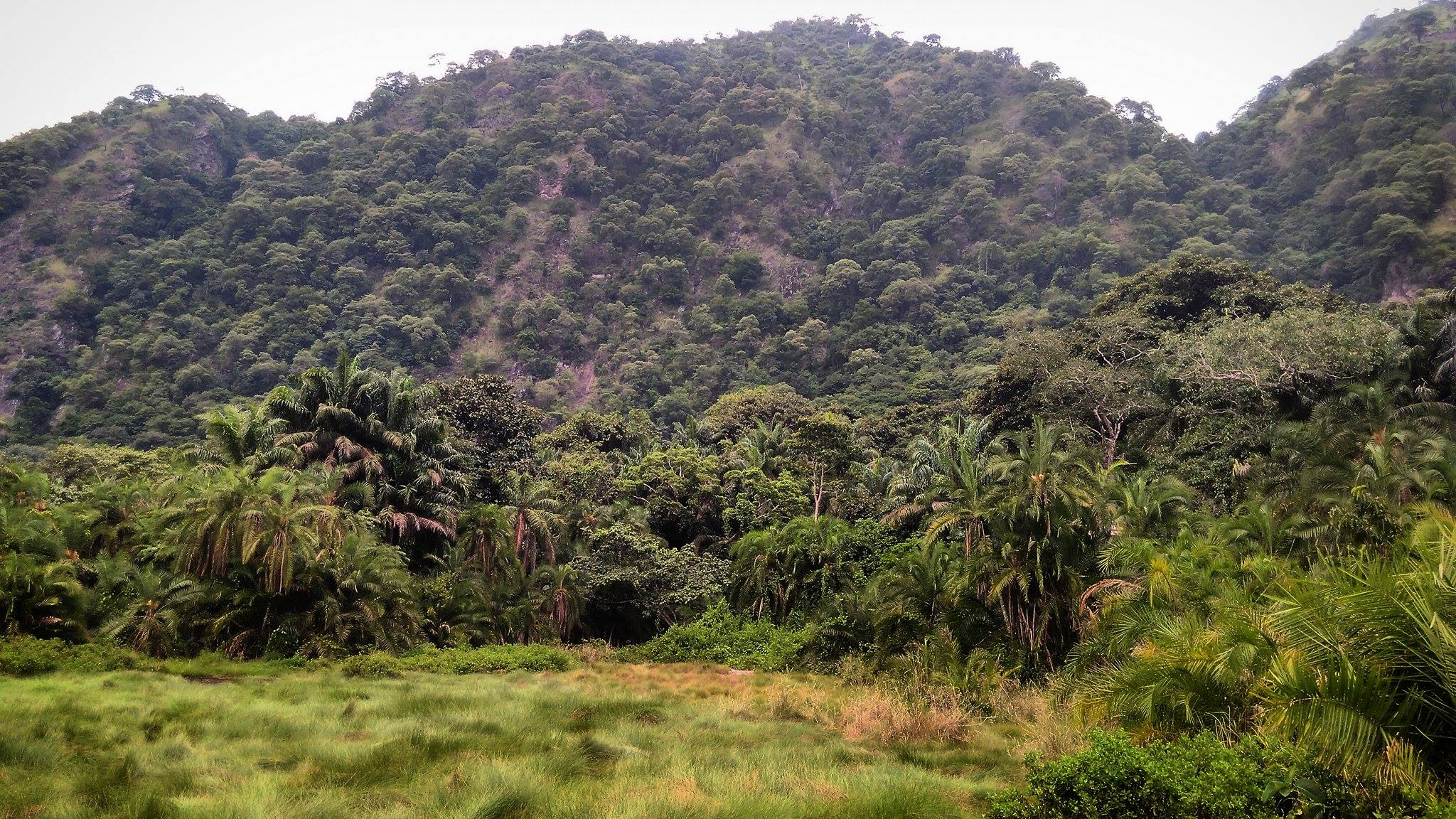 How Many National Park Are In Uganda