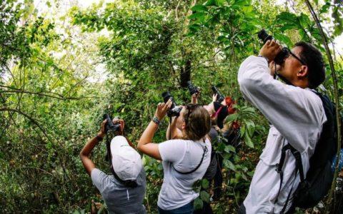 8 Steps To Choose The Right Uganda Safari Company